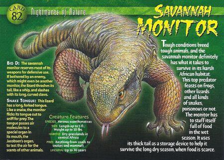 Savannah Monitor front