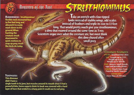 Struthiomimus front