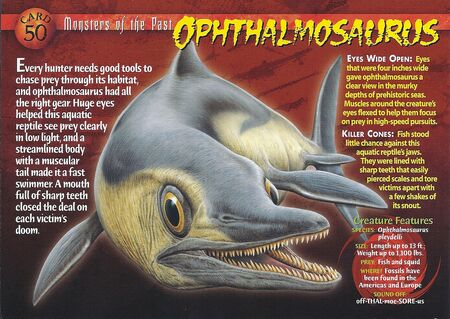 Ophthalmosaurus front