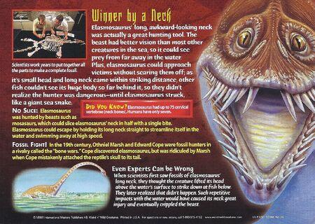 Elasmosaurus back