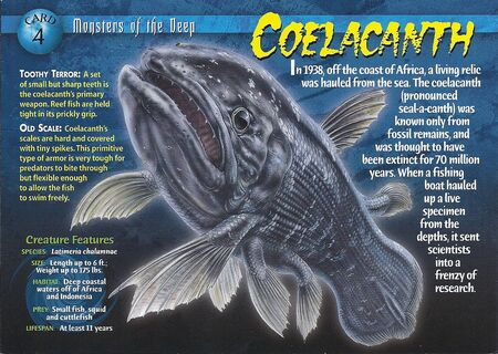 Coelacanth front