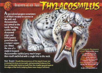 Thylacosmilus front