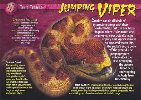 Jumping Viper front