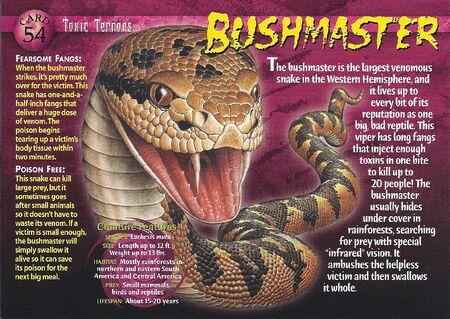 Bushmaster front