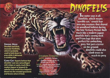 Dinofelis front