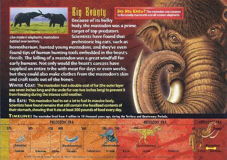 American Mastodon back