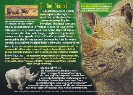 Black Rhino back