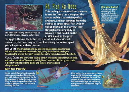 Arrow Crab back