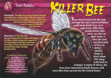 Killer Bee front