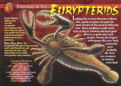 Eurypterid front