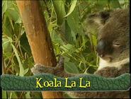 KoalaLaLa-SongTitle