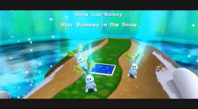Star Bunnies in the Snow-1-