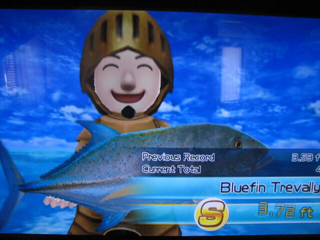 File:S rank Bluefin Travally.jpg