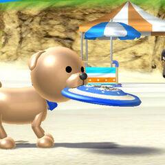 A dog holding a <a href=