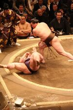 Hakuho fight Jan08