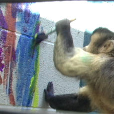 File:MonkeyPainting.jpg