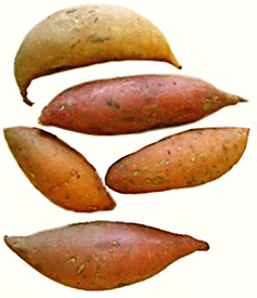 File:SweetPotatoes.jpg