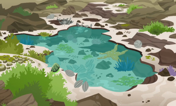 File:Stars Of the Tide Wild Kratts.PNG