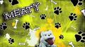 Thumbnail for version as of 16:09, November 6, 2012
