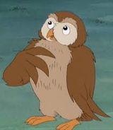 File:Owl 2'.jpg