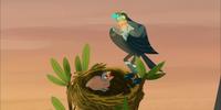 Loggerhead Shrike Power