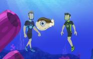 Blowfish.011