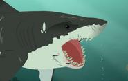 Sharks-Wild Kratts-32