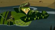 Croc.00353