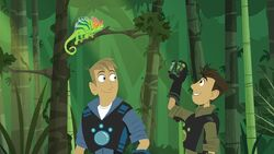 1022949-9-story-s-wild-kratts-takes-world-storm