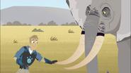 Martin touching Elephant