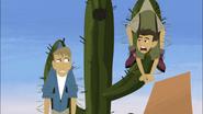 Bros in Cactus