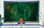 Hummingbird Wild Kratts.30