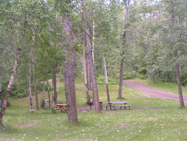 File:Habitat, open woodland.png