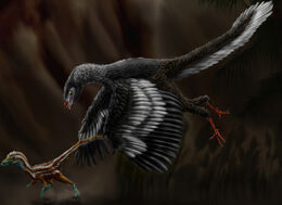 Archaeopteryx lithographica by durbed