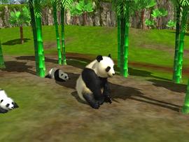 Wildlife Park 3 20120614 123546