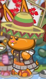 Mixican sombrero