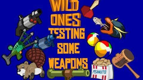 Wild Ones - Testing some Weapons