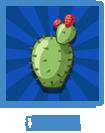 Cactus kgtxblue
