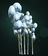 Snowy Tree Cluster