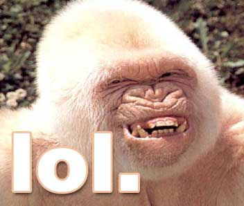 File:Ape lol.jpg