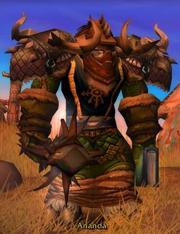 File:Wow-druid.jpg