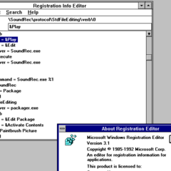 Windows 3.1 Registry Editor.