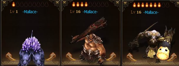 Mallace