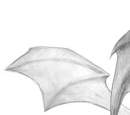Sandflügler
