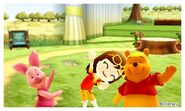 Piglet Winnie the Pooh and Mii Photos