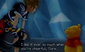 Winnie the Pooh and Sora