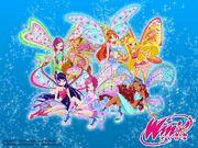 Winx Club Believix Offical Wallpaper