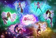 The-Winx-Club-Fairies-image-the-winx-club-fairies-36692815-1600-1100