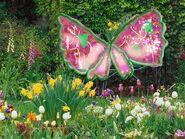 Flora s evergrix wings by winxstar-d5n3w71