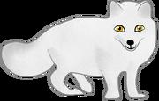 Snow fox resized